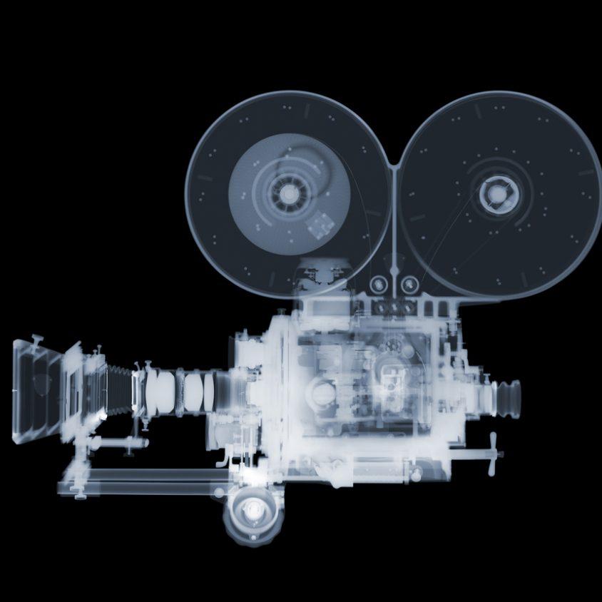 La galería de rayos X 19