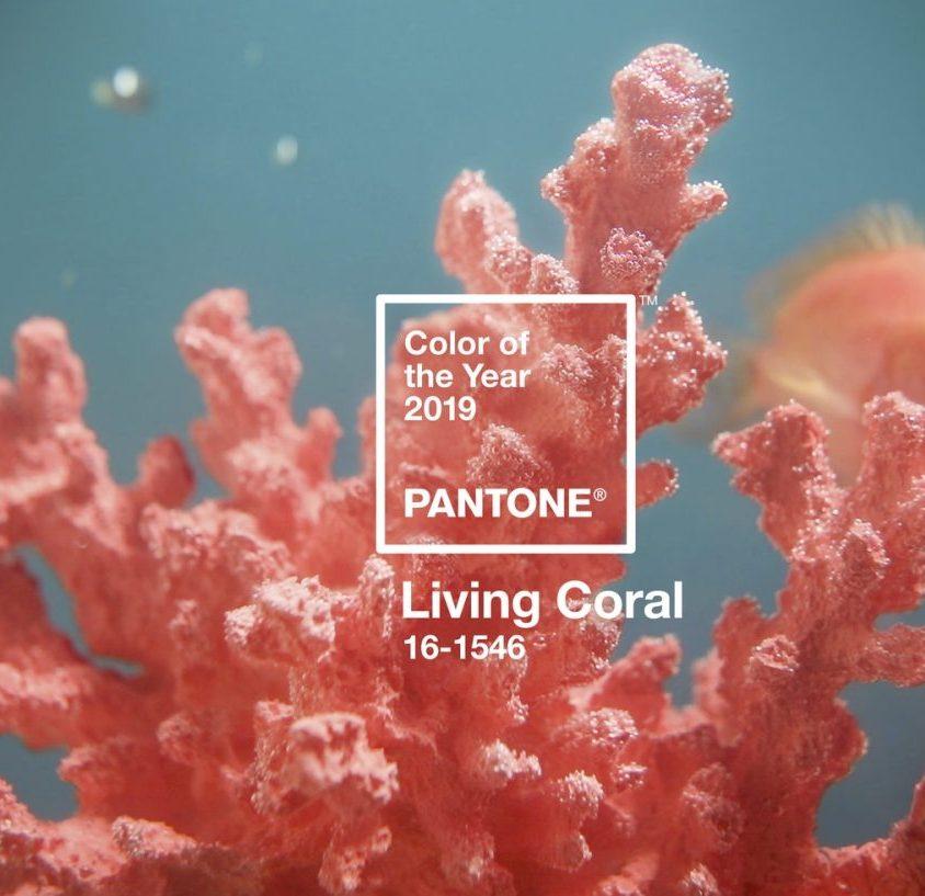 Living Coral es el Color del Año 2019 1