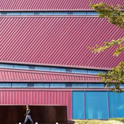 El extenso centro cultural Longgang 4