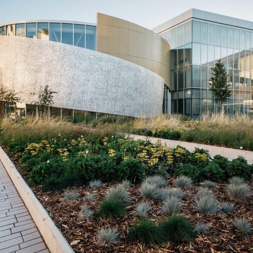 El Royal Alberta Museum 14