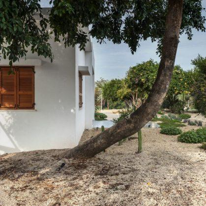 Mediterranean Cacti House 5