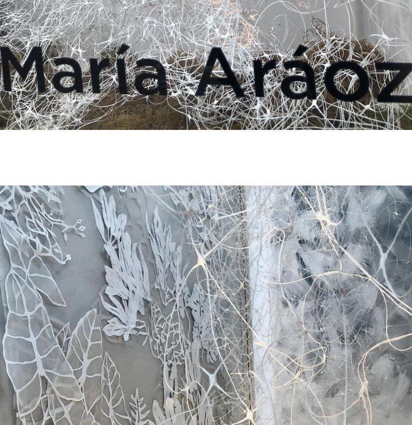 María Aráoz en Casa Dir 6