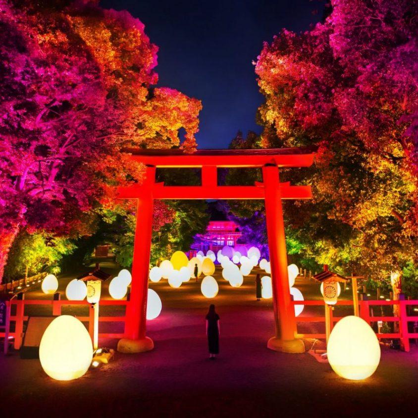 El bosque digitalizado del Santuario Shimogamo 1