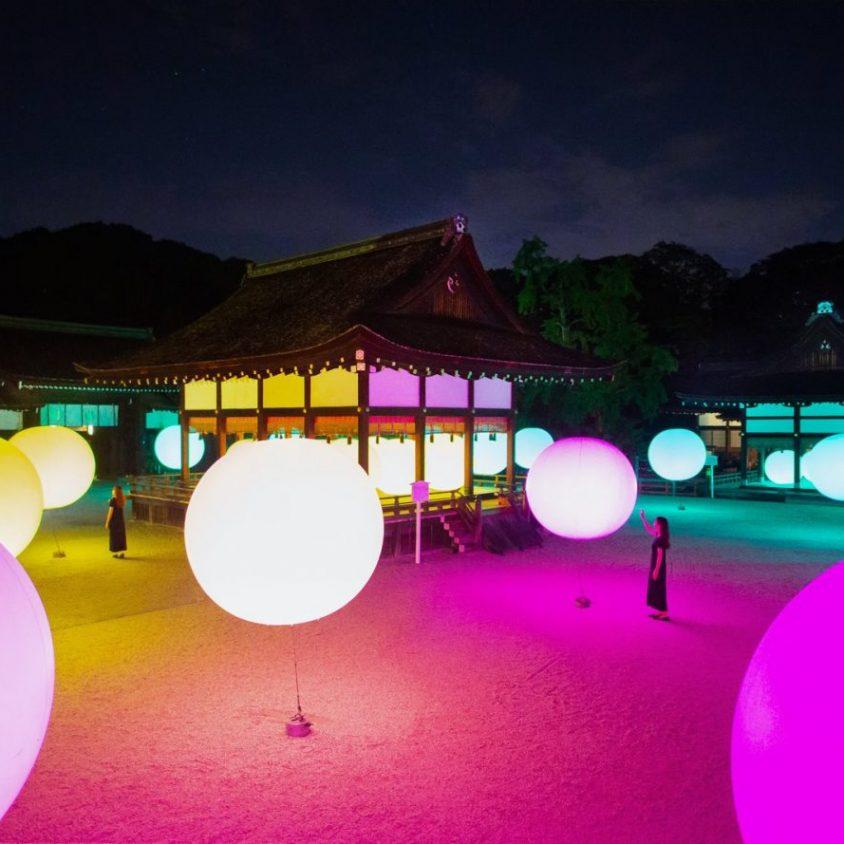 El bosque digitalizado del Santuario Shimogamo 9