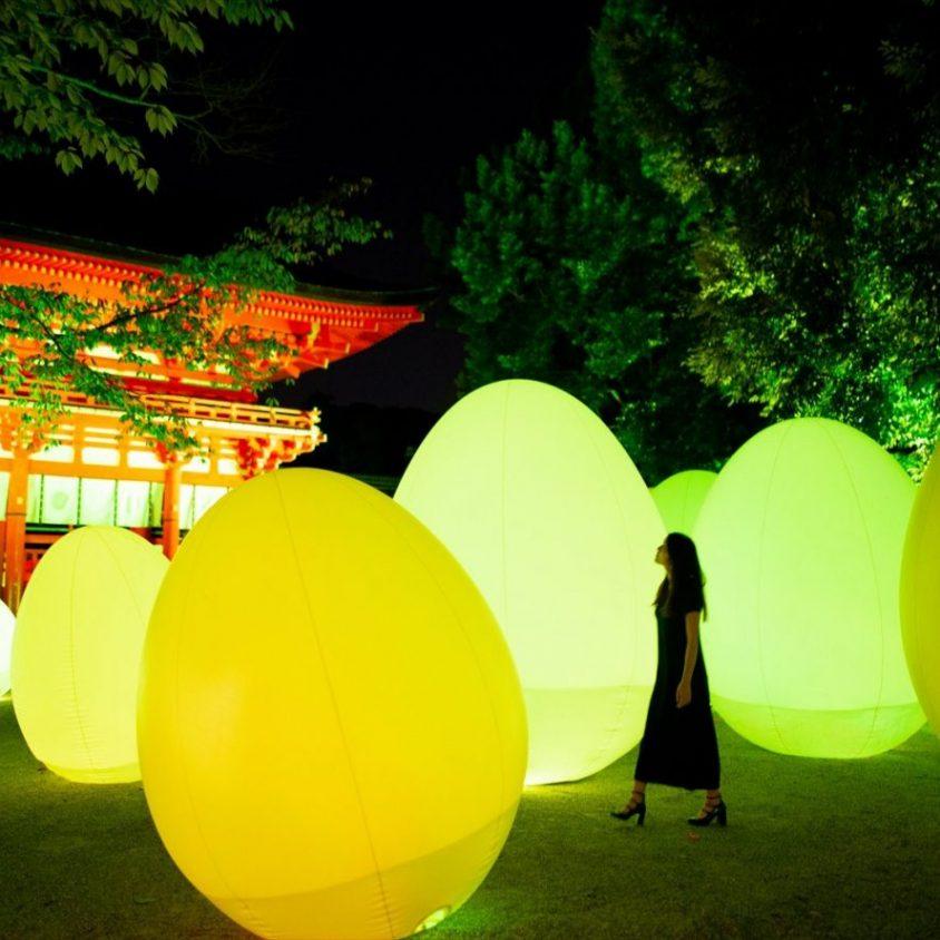 El bosque digitalizado del Santuario Shimogamo 2