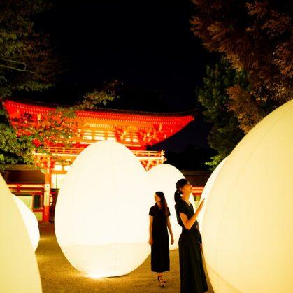 El bosque digitalizado del Santuario Shimogamo 7