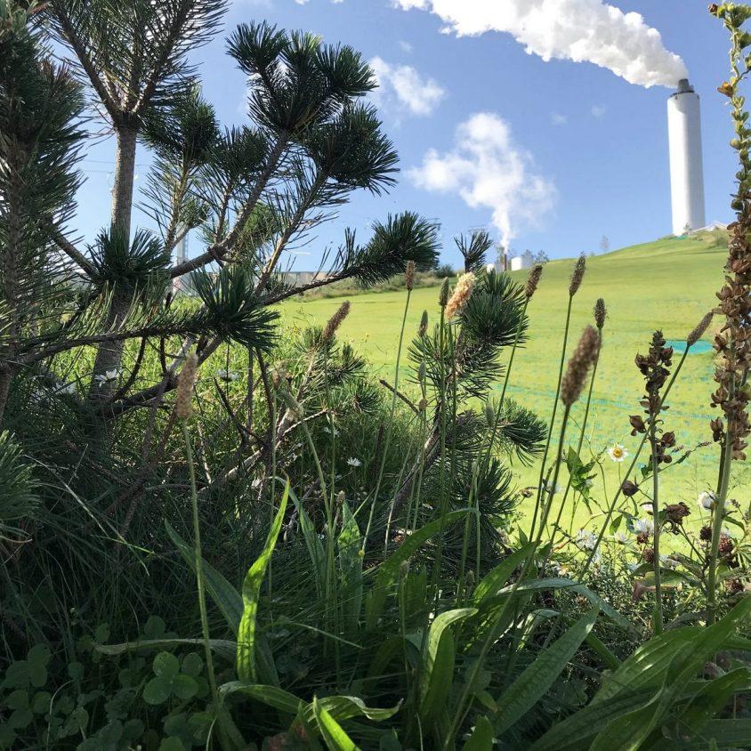 CopenHill, una planta de energía sustentable 7