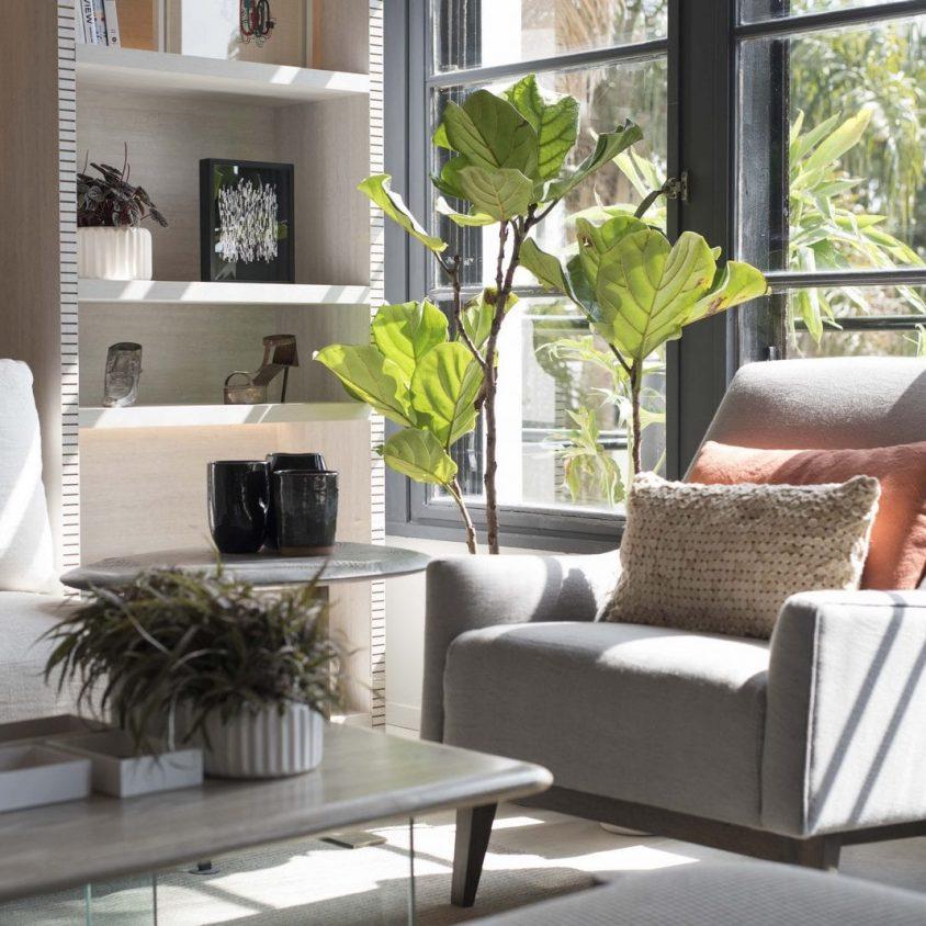 El diseño natural y elegante de un monoambiente 2