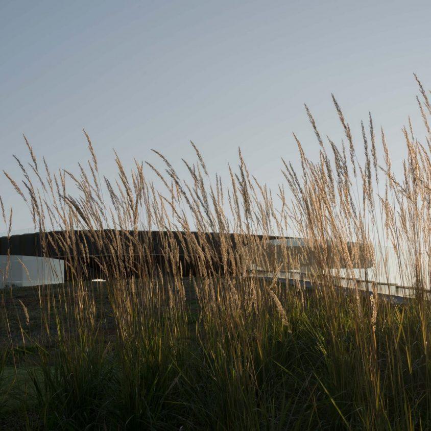 Arquitectura y naturaleza sin límites 17