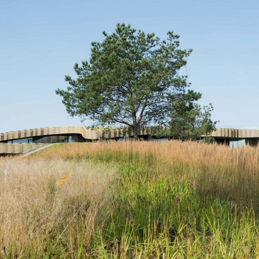 Arquitectura y naturaleza sin límites 3