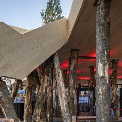 La construcción con madera contra el cambio climático 11