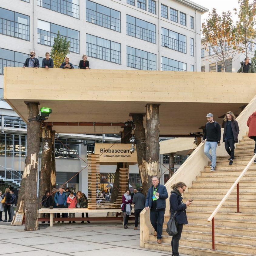 La construcción con madera contra el cambio climático 7