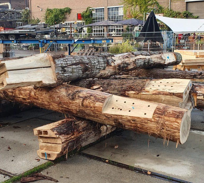 La construcción con madera contra el cambio climático 18