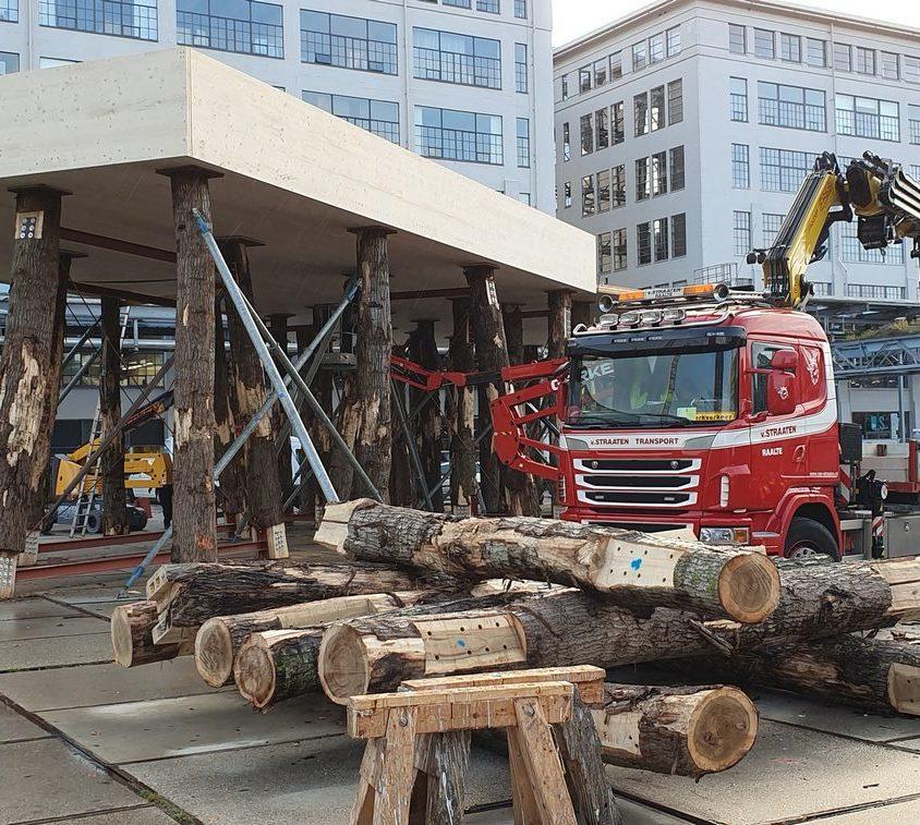 La construcción con madera contra el cambio climático 17