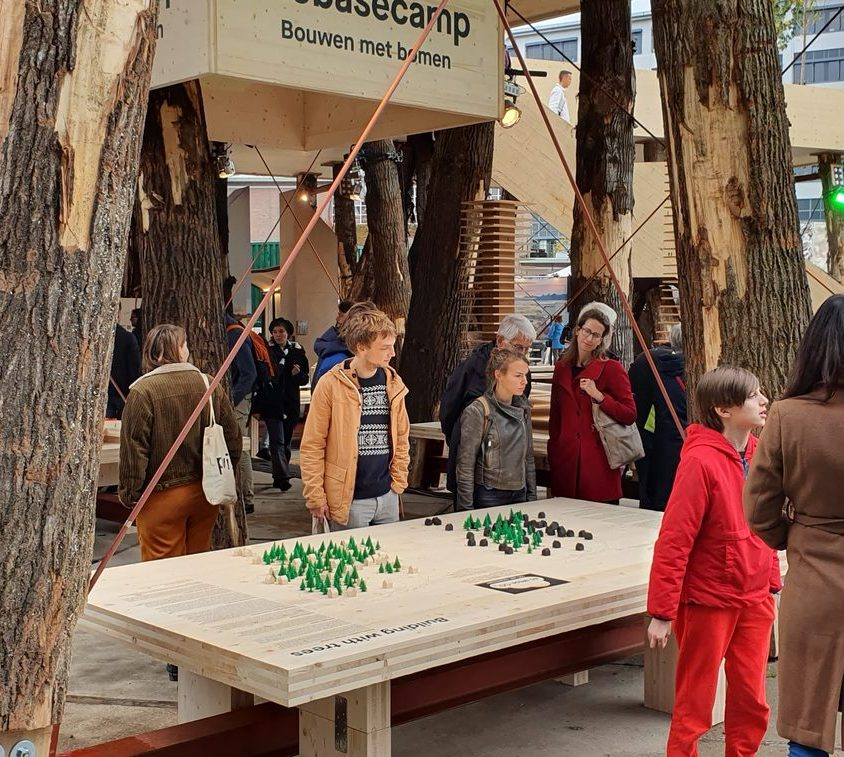 La construcción con madera contra el cambio climático 4