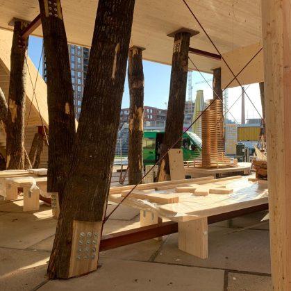 La construcción con madera contra el cambio climático 13