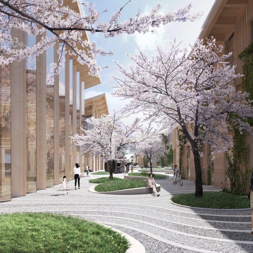 El tejido de una ciudad para mejorar la calidad de vida 5