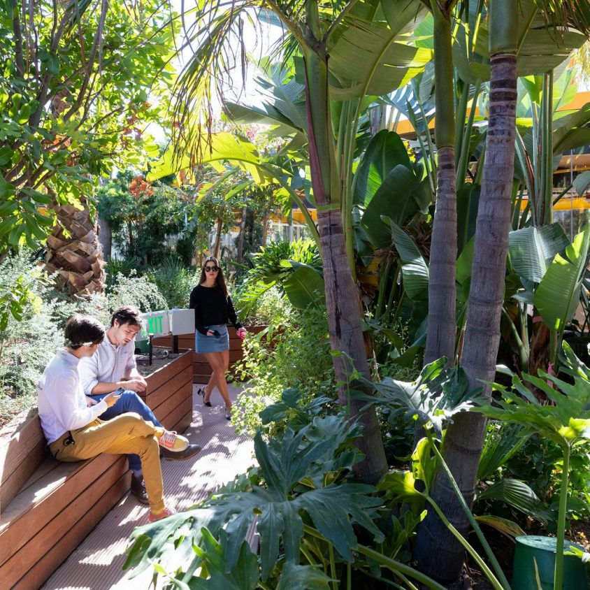 Second Home, un coworking en medio de la naturaleza 14