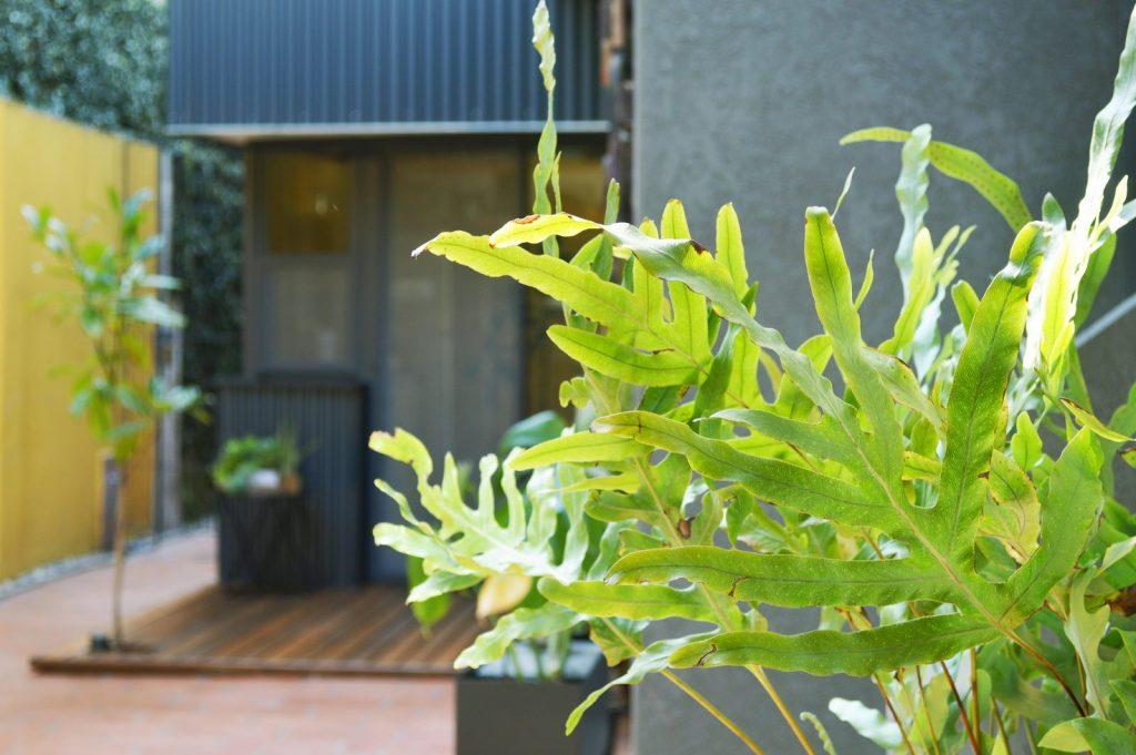Ampliar los espacios y agregar valor a Casa Origen 17