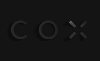 COX Architecture 1