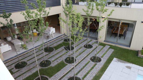 Casa DR con un bosque de Ginkos 2