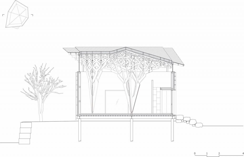 La casa de tres árboles 12