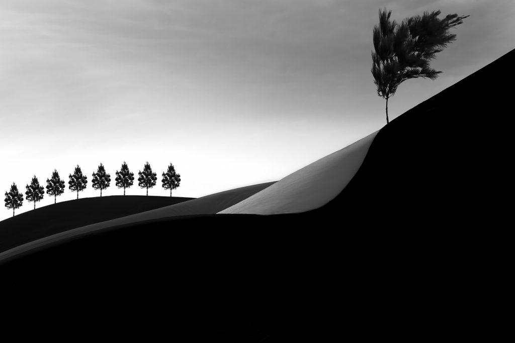 Premio internacional de fotografía de Siena 12